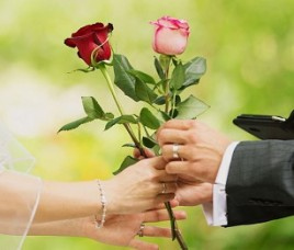 rose exchange